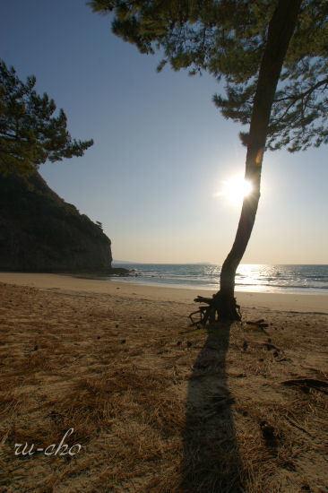 冬の浜辺.jpg